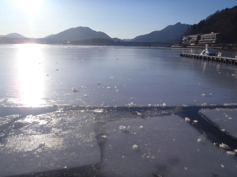 山中湖、河口湖、西湖、野尻湖バス釣りガイド。早野剛史